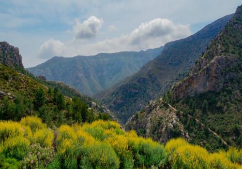 Ga jij ook genieten van Andalusië?